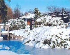 Зимовий ландшафтний дизайн