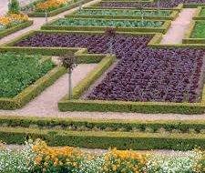 Декоративні сади і городи в деталях