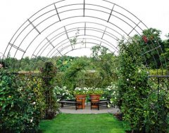 Пергола - прикраса великих садів світу