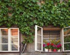 Господарські будівлі та малоестетичні фасади: 6 способів декорування
